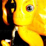 telfer cepnoy a 150x150 - Фотогалерея